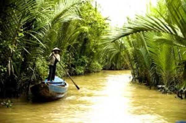 Coconut palms, the symbol of Ben Tre