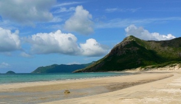 Come to Con Dao National Park to see Dugon!