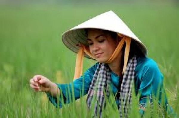 A glance at Vietnamese clothing