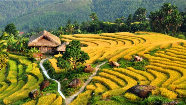 essential-vietnam-family-14-days