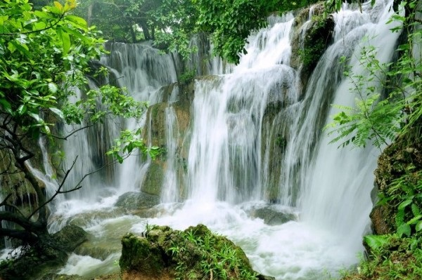 discover-cuc-phuong-national-park-van-long-natural-reserve-2d1n