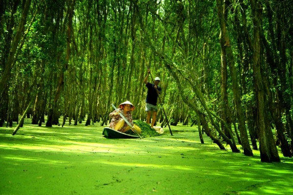 MEKONG DELTA 3 DAYS TOUR - COCONUT ISLAND - CAI RANG FLOATING MARKET - TRA SU SANCTUARY